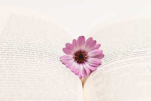 Flower and book #6