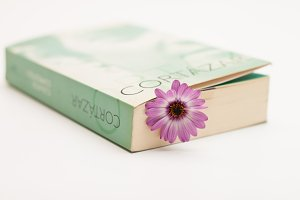 Flower and book #2
