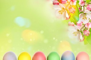 Easter eggs with apple tree blossoms