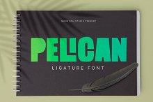 Pelican by  in Fonts