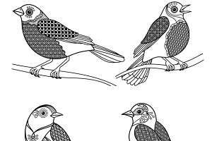 Hand drawn pattern decor birds