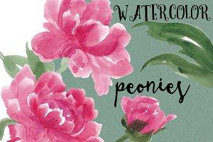 Watercolor painting peonies