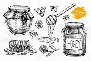 Honey Set. Hand Drawn Illustrations