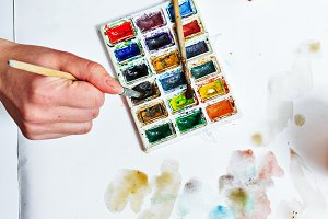 Watercolor paints. Artist draw