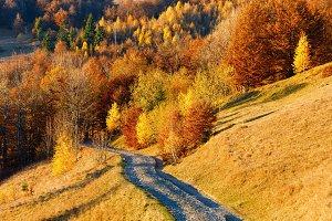 Rural autumn mountain road.