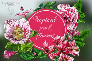 Pink watercolor vector flowers