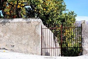 wall, gate, lemon and orange