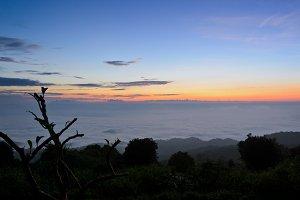 Sea of mist on sunrise