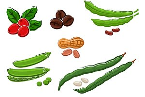 Assorted fresh legumes