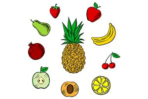 Colorful fresh fruits icons