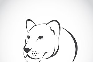 Vector image of an female lion head