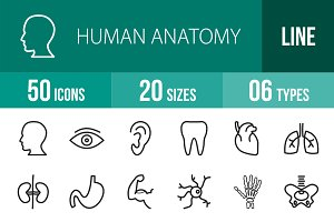 50 Human Anatomy Line Icons