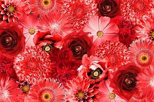 Vintage red flowers background