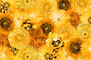 Vintage yellow flowers background