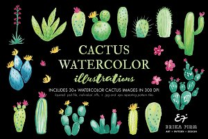 Watercolor Cactus Illustrations
