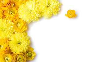 Yellow Flowers Styled Stock Photo