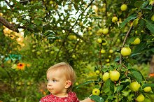 Little cute girl in garden. Summer