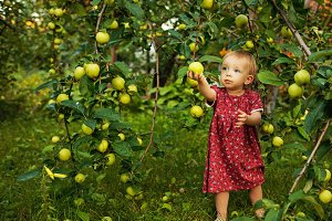 Little cute girl near apple tree