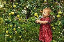 Little cute girl in summer garden