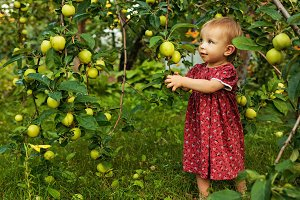 Little cute girl in summer garden