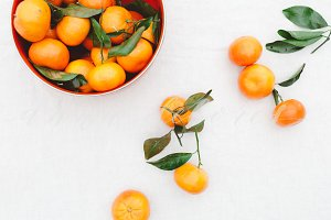 Orange Clementine Styled Stock Photo