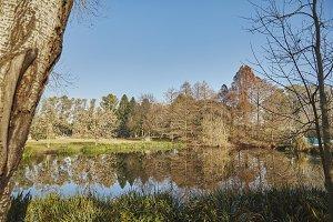 Reflective winter lake
