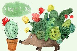 Watercolor Cactus Hedgehog PNG+JPG