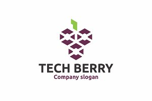 Tech Berry