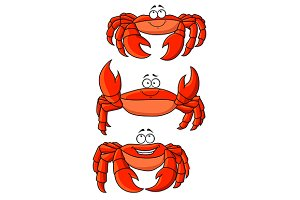 Cartoon ocean red crabs