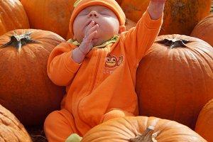 Praying Pumpkin Baby