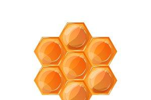 Bright glossy honeycomb