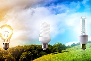 Comparison light bulb energy nature