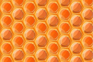 Bright tasty honey honeycombs