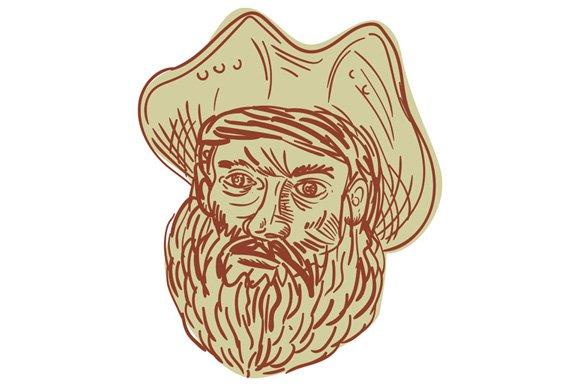 Pirate Head Beard Drawing
