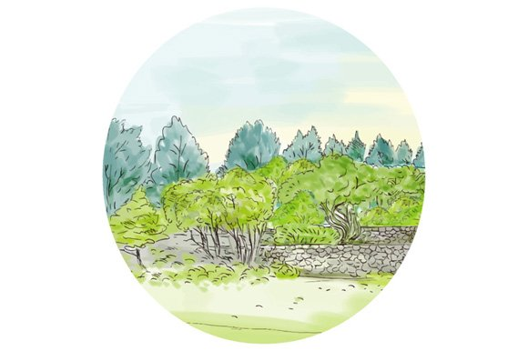 Trees in Park with Cornwall Oval in Illustrations