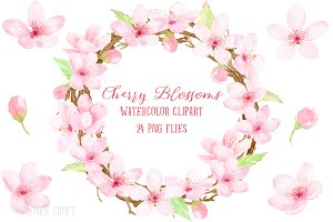Watercolor Cherry Blossoms Pink