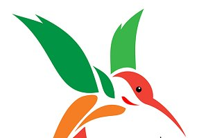 Vector Images of hummingbird