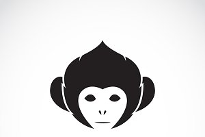 Vector image of an monkey head