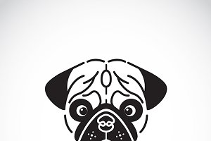 Vector image of pug's face