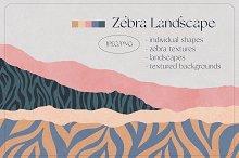 ZEBRA Landscape Illustration Creator by  in Graphics