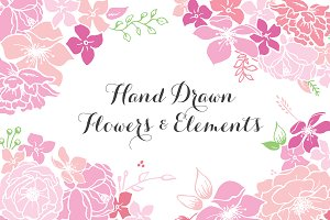 Hand drawn flowers & elements