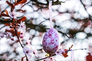 Decorated eggs on a plum tree