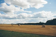 Hayfield with Hay Bales