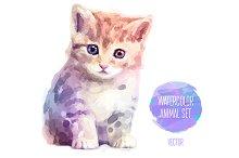 Сute little kitty (1)