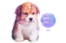 Сute little puppy (2)
