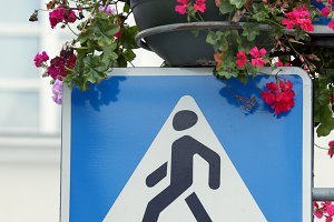 Crossing sign and flowers