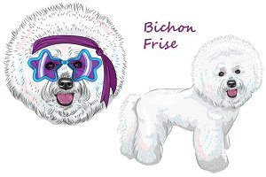 Dog Bichon Frise SET