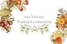 100 Vintage Flowers