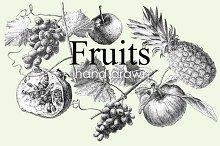 Fruits. Hand drawing.
