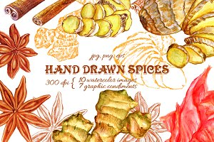 Hand Drawn Spices Set